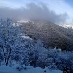 I terreni coperti di neve